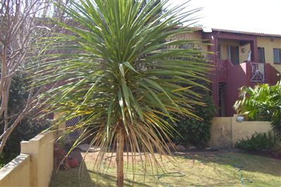 Germiston, Castleview Property  | Houses To Rent Castleview, Castleview, Apartment 2 bedrooms property to rent Price:,  5,00*