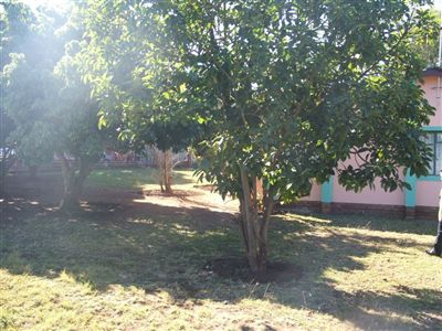 Louis Trichardt property for sale. Ref No: 3110418. Picture no 4