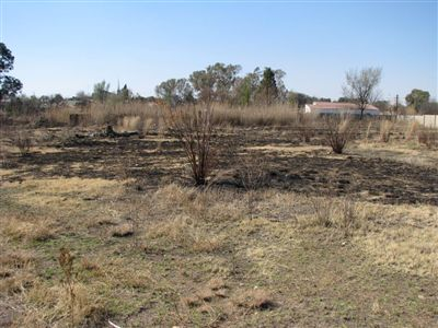 Parys property for sale. Ref No: 3136074. Picture no 2