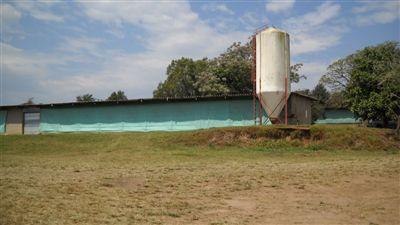 Cato Ridge, Cato Ridge Property  | Houses For Sale Cato Ridge, Cato Ridge, Farms  property for sale Price:6,000,000