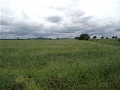 Louis Trichardt property for sale. Ref No: 3175682. Picture no 2