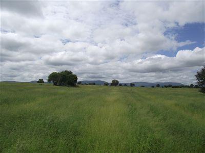 Louis Trichardt property for sale. Ref No: 3175682. Picture no 12