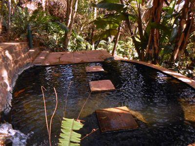 Pretoria, Waterkloof Ridge Property  | Houses To Rent Waterkloof Ridge, Waterkloof Ridge, Apartment 1 bedrooms property to rent Price:, 15,00*