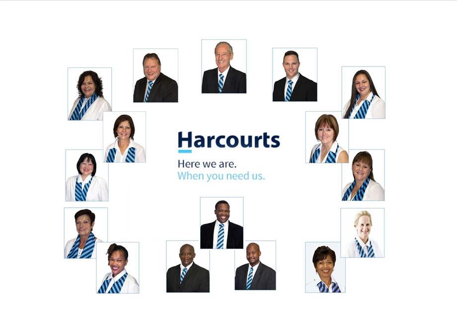 The Harcourts Alpha Team