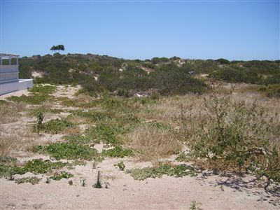 Paternoster property for sale. Ref No: 13324605. Picture no 1