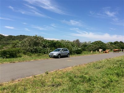 Cintsa property for sale. Ref No: 13236037. Picture no 6