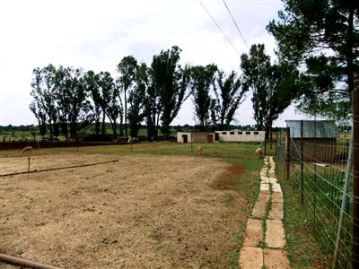 Farms for sale in Oudedorp