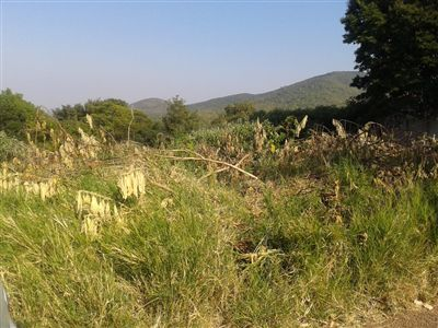 Louis Trichardt property for sale. Ref No: 3289685. Picture no 1