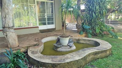 Property Louis Trichardt : Houses For Sale Louis Trichardt (All), Louis Trichardt, House 6 bedrooms property for sale Price:2,160,000