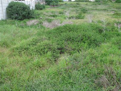 Property and Houses for sale in Diaz Beach, Vacant Land - ZAR 850,000