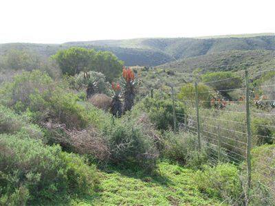 Property and Houses for sale in Gouritz, Farms, 3 Bedrooms - ZAR 2,500,000