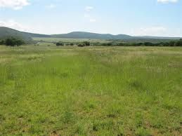 Rustenburg, Boshoek Property  | Houses For Sale Boshoek, Boshoek, Farms  property for sale Price:49,500,000