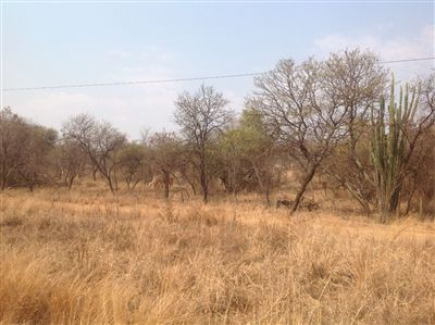 Kameelfontein for sale property. Ref No: 13240366. Picture no 4