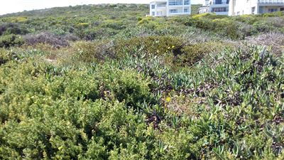 Yzerfontein property for sale. Ref No: 13247541. Picture no 1