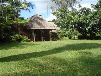 Property Louis Trichardt : Houses For Sale Louis Trichardt (All), Louis Trichardt, Farms 3 bedrooms property for sale Price:3,000,000