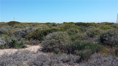 Yzerfontein property for sale. Ref No: 13275963. Picture no 1