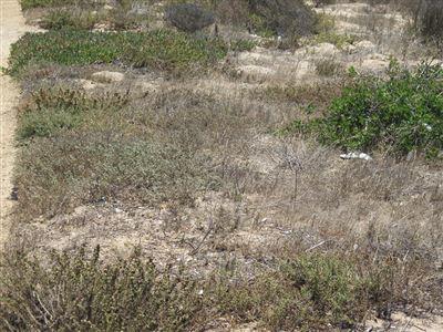 Laguna Sands property for sale. Ref No: 13310294. Picture no 3