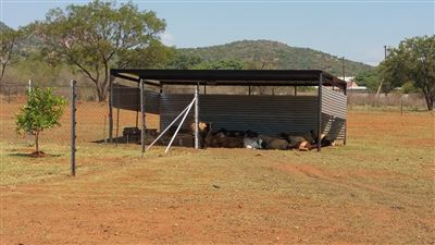 Rustenburg And Ext property for sale. Ref No: 13304637. Picture no 33