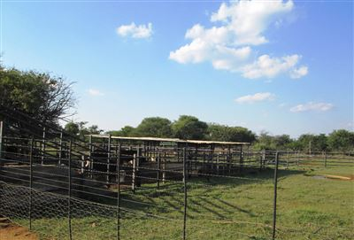 Thabazimbi, Dwaalboom Property  | Houses For Sale Dwaalboom, Dwaalboom, Farms 6 bedrooms property for sale Price:5,850,000