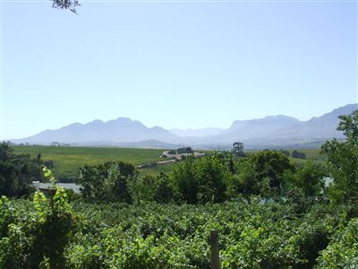 Farms for sale in Stellenbosch Farms