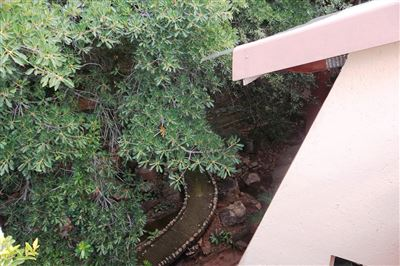 Safari Gardens And Ext property for sale. Ref No: 13312143. Picture no 10