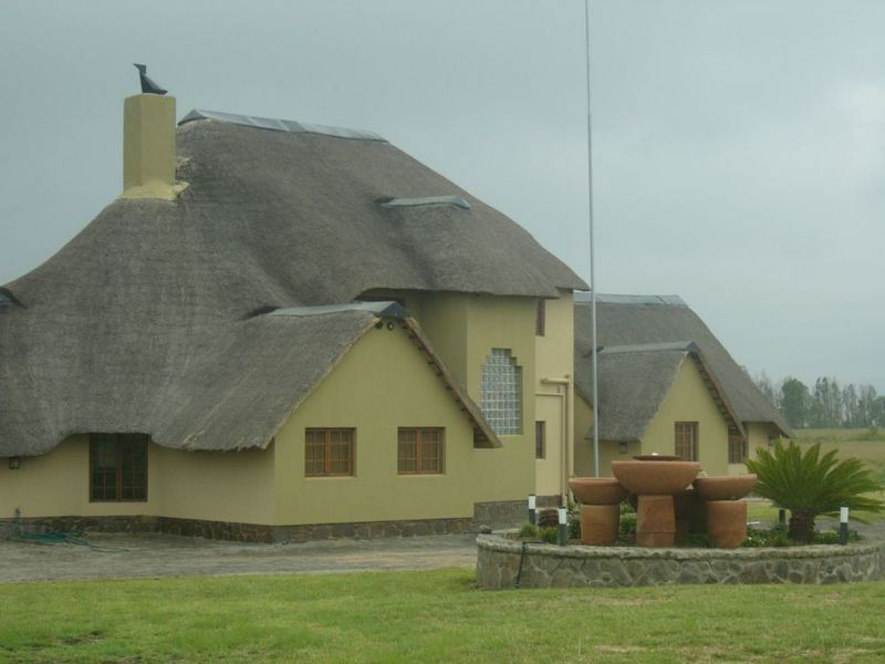 Thatch roof in Peninsula