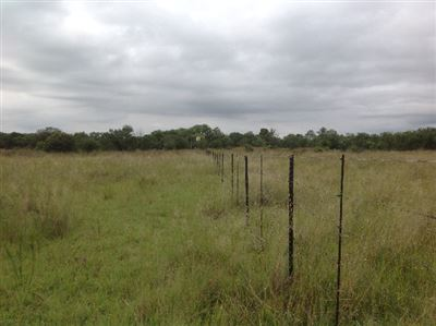 Kameeldrift East property for sale. Ref No: 13321341. Picture no 1
