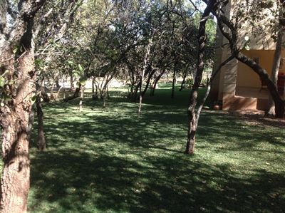 Kameelfontein for sale property. Ref No: 13325550. Picture no 4