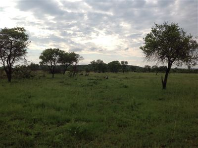 Buffelsdrift property for sale. Ref No: 13325564. Picture no 1
