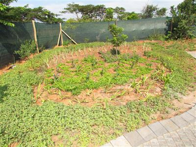 Simbithi Eco Estate property for sale. Ref No: 13282294. Picture no 36