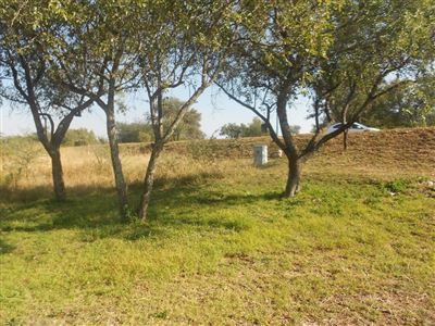 Parys Golf And Country Estate property for sale. Ref No: 13394915. Picture no 1
