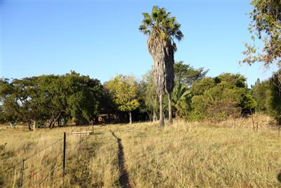 Mnandi for sale property. Ref No: 13346499. Picture no 22