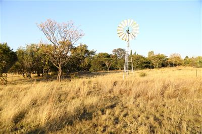 Mnandi for sale property. Ref No: 13346499. Picture no 23