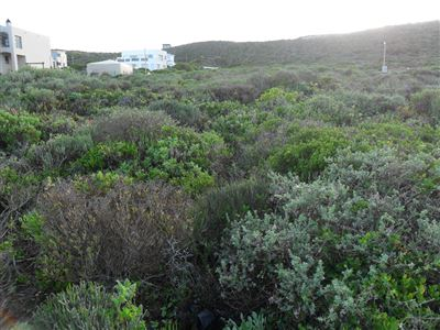 Yzerfontein property for sale. Ref No: 13350843. Picture no 3