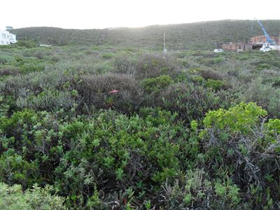 Yzerfontein property for sale. Ref No: 13350843. Picture no 1