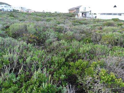 Yzerfontein property for sale. Ref No: 13350843. Picture no 6