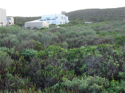 Yzerfontein property for sale. Ref No: 13349188. Picture no 1