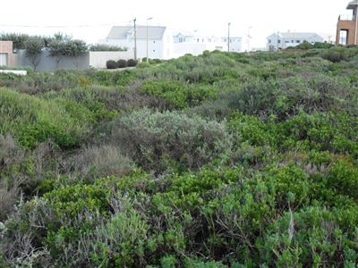 Yzerfontein property for sale. Ref No: 13349188. Picture no 2