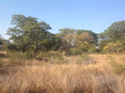 Kameeldrift East property for sale. Ref No: 13354156. Picture no 1