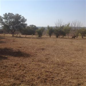 Kameelfontein property for sale. Ref No: 13361995. Picture no 1