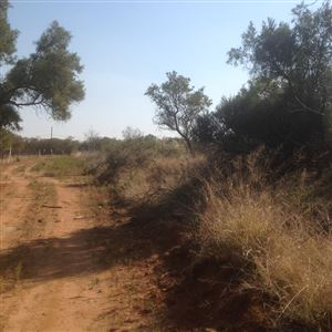 Kameelfontein property for sale. Ref No: 13361994. Picture no 1