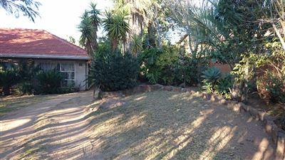 Witbank, Del Judor Property  | Houses To Rent Del Judor, Del Judor, House 4 bedrooms property to rent Price:,  8,80*