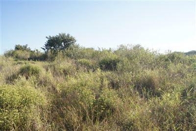 Mount Richmore Village Estate property for sale. Ref No: 13450391. Picture no 4