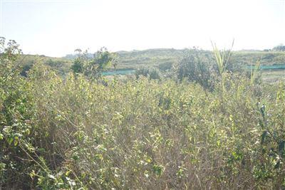 Mount Richmore Village Estate property for sale. Ref No: 13369496. Picture no 1