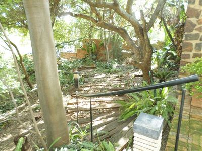 Waterkloof property to rent. Ref No: 13370347. Picture no 12