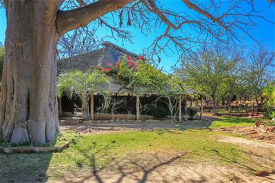 Property Louis Trichardt : Houses For Sale Louis Trichardt (All), Waterpoort, Farms  property for sale Price:14,500,000