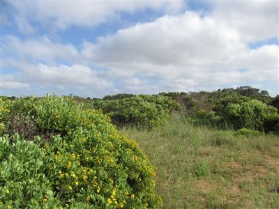 Stilbaai Wes for sale property. Ref No: 13378689. Picture no 1
