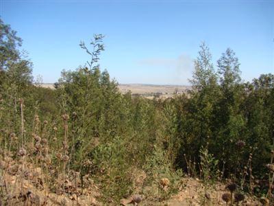 Pretoria, Grootfontein Country Estate Property  | Houses For Sale Grootfontein Country Estate, Grootfontein Country Estate, Vacant Land  property for sale Price:920,000