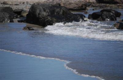 Calypso Beach property for sale. Ref No: 13383535. Picture no 4