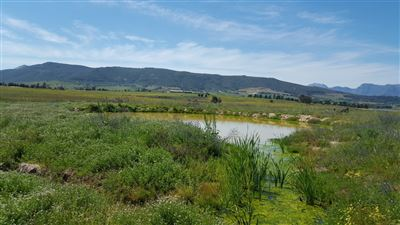 Paarl property for sale. Ref No: 13395312. Picture no 1